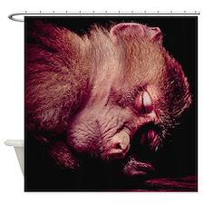 Sleeping Monkey Shower Curtain