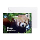 Red panda Greeting Cards