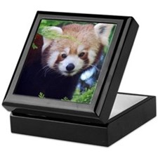 Red Panda Keepsake Box