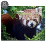 Red panda Puzzles