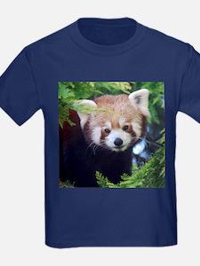 Red Panda T