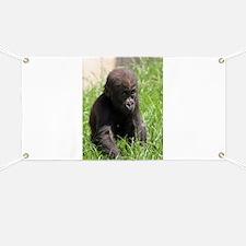 Gorilla-Baby002 Banner