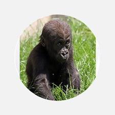 """Gorilla-Baby002 3.5"""" Button"""