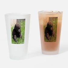 Gorilla-Baby002 Drinking Glass