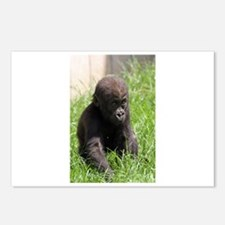 Gorilla-Baby002 Postcards (Package of 8)