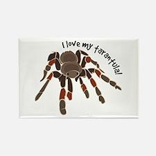 Love My Tarantula Magnets