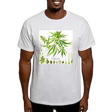 Cannabis Sativa L. T-Shirt