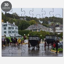 Funny Horses carriages Puzzle