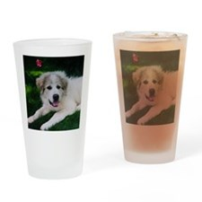 Great pyrenees puppy Drinking Glass