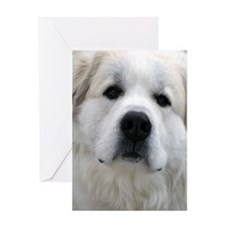 Great Pyrenees Greeting Cards