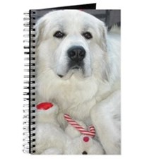 great pyrenees with teddy bear Journal