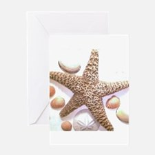 seashells Greeting Cards