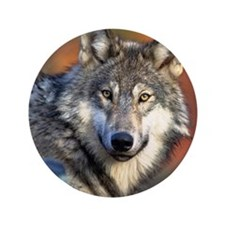 "Wolf Photograph 3.5"" Button"