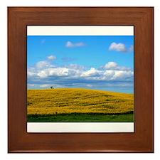 Spring Framed Tile
