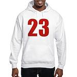 Alluring 23 Hooded Sweatshirt