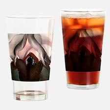 Unique Vagina Drinking Glass