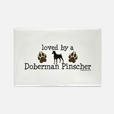 Loved by a doberman pinascher Magnets