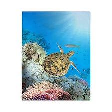 Sea Turtle Twin Duvet