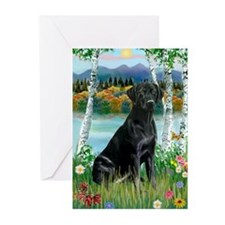 Birches & Black Labrador Greeting Cards (6)