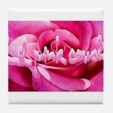 Lil Pink Crush Pink Rose2.jpg Tile Coaster