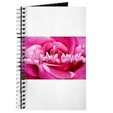 Lil Pink Crush Pink Rose2.jpg Journal
