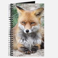 Fox002 Journal