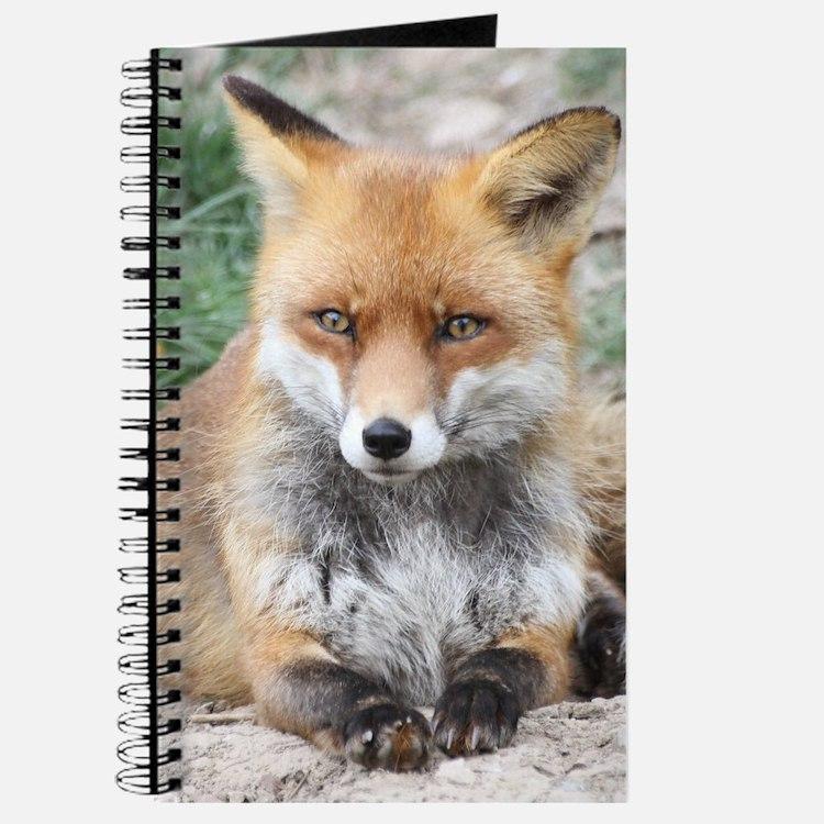 Fox002 Journal