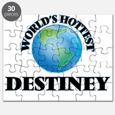 World's Hottest Destiney Puzzle
