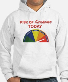 Risk of awesome today Hoodie