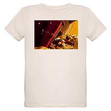Broken Boomerang T-Shirt