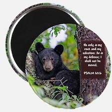 Baby Black Bear - Psalms 62-6 Magnets