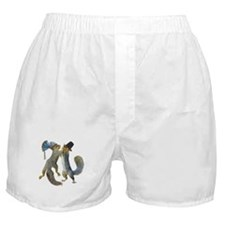 Dancing Squirrel Boxer Shorts