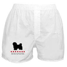 Havanese (red stars) Boxer Shorts