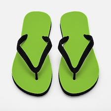 Spring Green Solid Color Flip Flops
