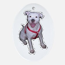 "Holiday ""Gracie"" Oval Ornament"