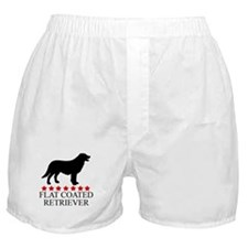 Flat Coated Retriever (red st Boxer Shorts
