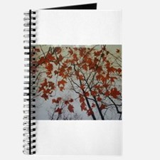 Fall Foliage Journal