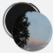 Evening Sky Magnets