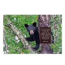 Baby Bear - John 3:16 Postcards (Package of 8)