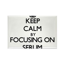 Keep Calm by focusing on Serum Magnets