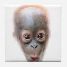 Funny Baby Orangutan Face Tile Coaster