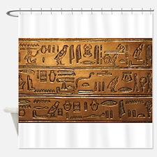 Hieroglyphs 2014-1020 Shower Curtain