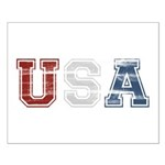 Distressed USA Country Logo Small Poster