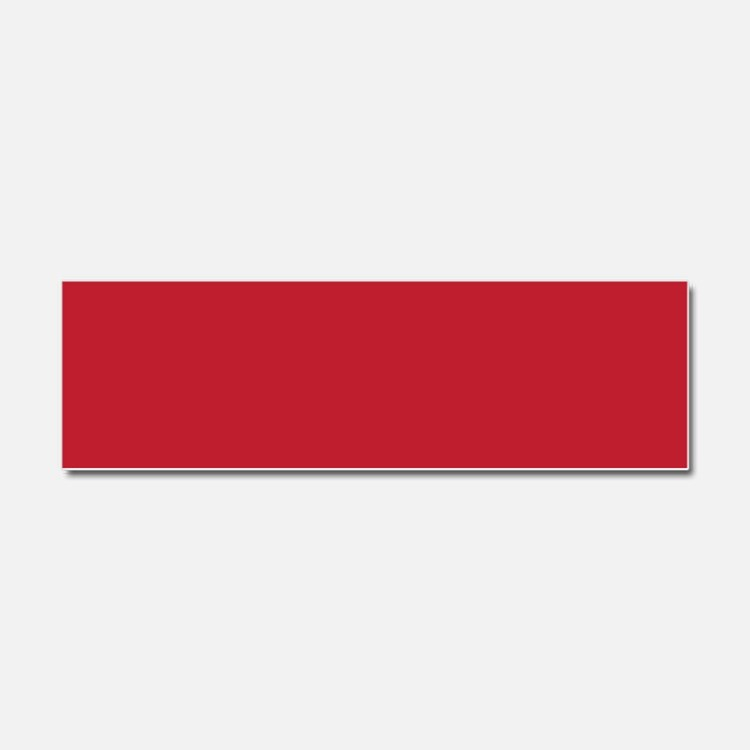 Cardinal Red Solid Color Car Magnet 10 x 3