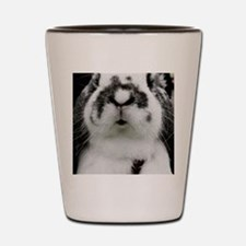 French Lop Close Up  Shot Glass