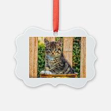 Pot Of Baby Kitten Ornament