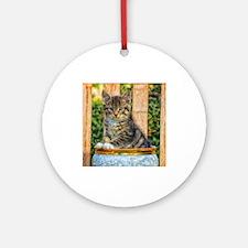 Pot Of Baby Kitten Ornament (Round)