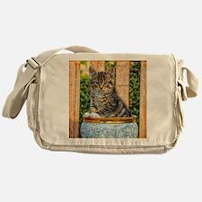 Pot Of Baby Kitten Messenger Bag