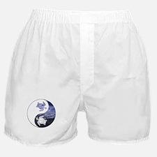 YN Turtle-01 Boxer Shorts
