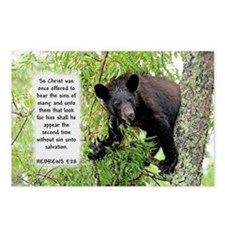 Bear The Sins - Hebrews 9:28 Postcards (Package of